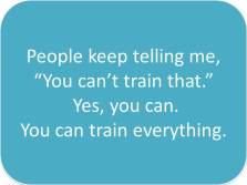 "people keep telling me, ""You can't train that."" Yes, you can. You can train everything"